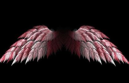 wings 420
